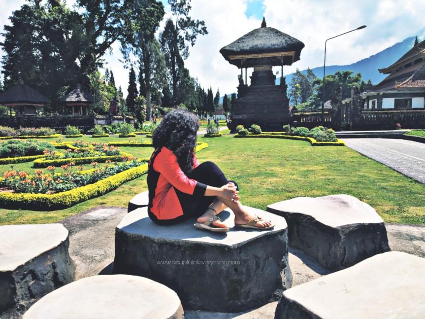 Bali Diaries 2: Touring around. An honest Indian's perspective